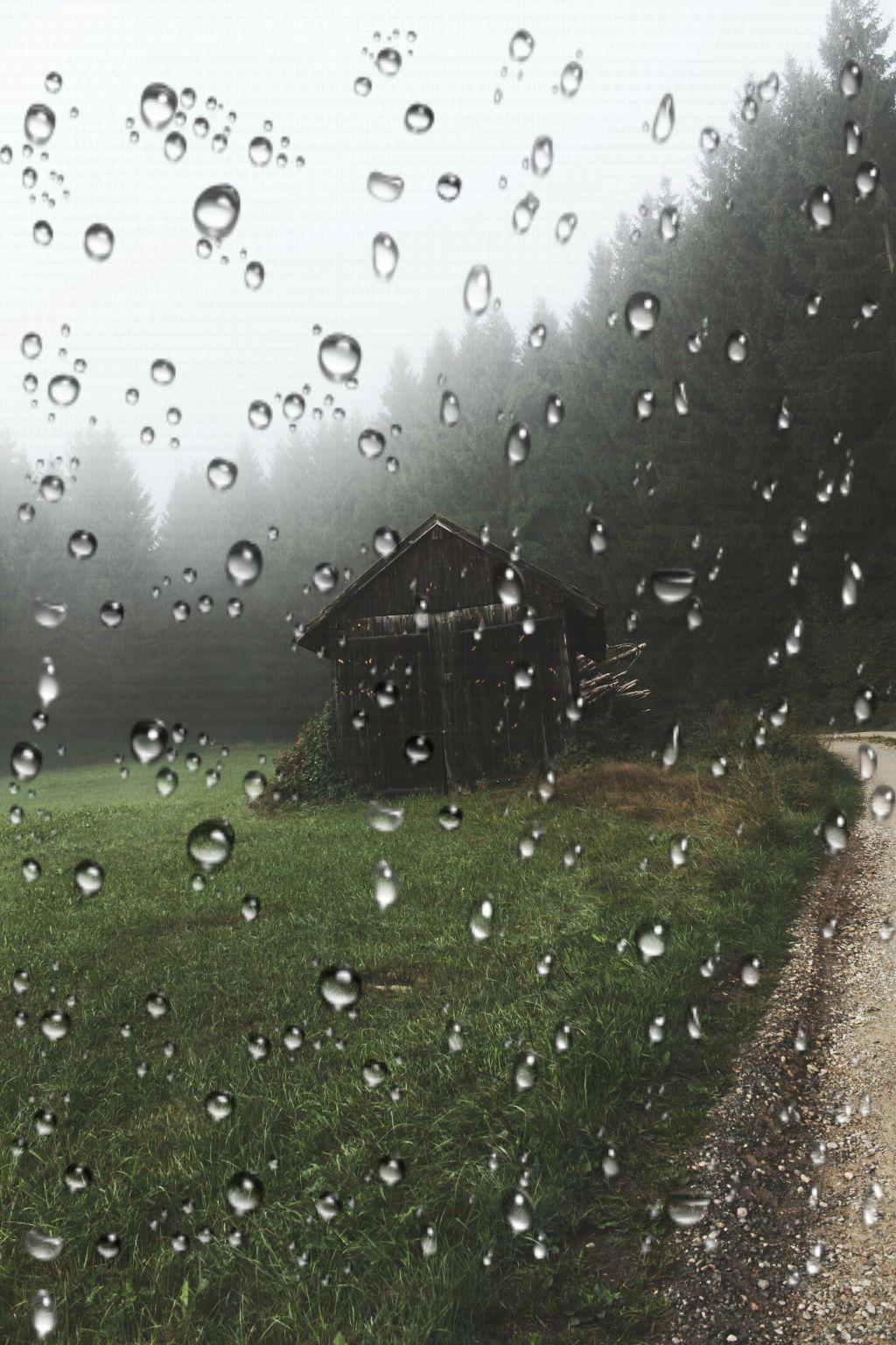 #rain  #beautiful  #peaceful