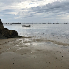 freetoedit lowtide beach