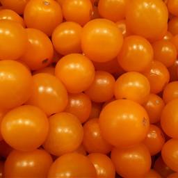 freetoedit tomatoes vegetables
