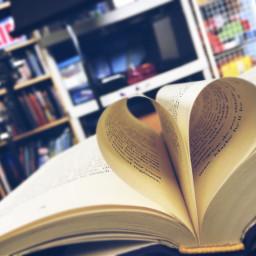 booklover book freetoedit remixit