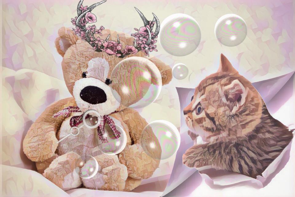 #teddybear