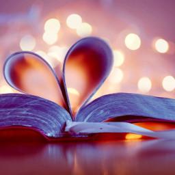 booklover freetoedit book love