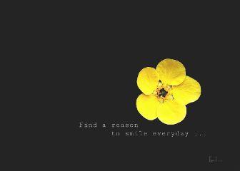 blossom lightanddark yellow minimalism quotesandsayings