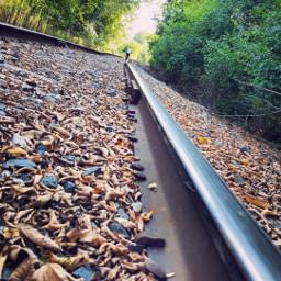 travel traintracks minnesota nature naturephotography
