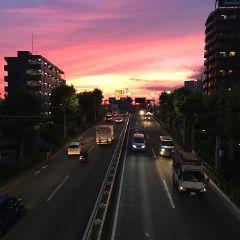 tokyo freetoedit beautifull night good