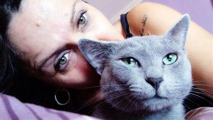 green cat catsofpicsart catlove