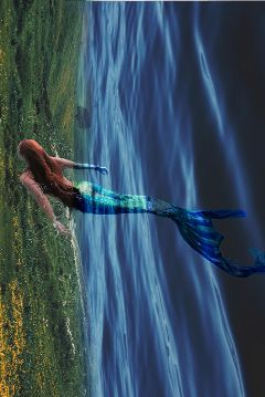 freetoedit water mermaid fieldes myedit