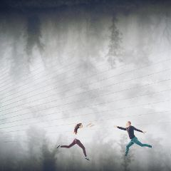 freetoedit people jump trees fog