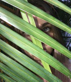 art modeling palmtrees palmfronds shadows