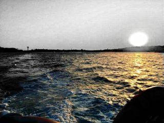 freetoedit sunshine sea beautifulview blackandwhite