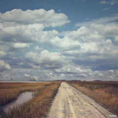 freetoedit horizon roadtowhere blackwaternaturepreserve myoriginalphoto