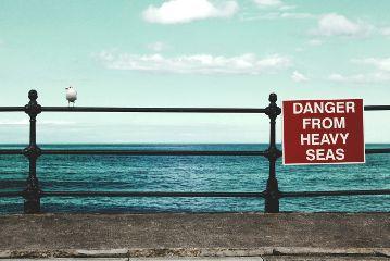 ocean bird seagull sign minimal
