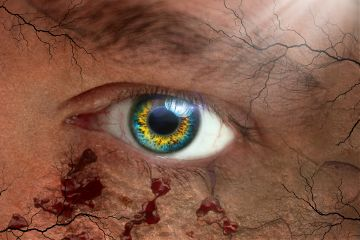freetoedit eye veins blood photography