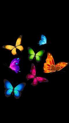 freetoedit wallpaper butterflies black colorful