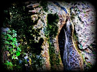 waterfall wood forest stone water