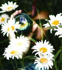guy nature flowers plant doubleexposure freetoedit