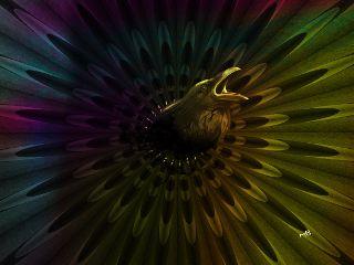 freetoedit interesting art night crow