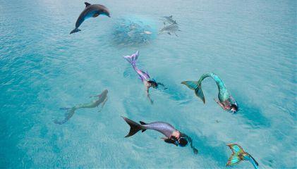 mermaid freetoedit mermaids