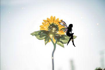 freetoedit fairy sparkles sunflower flowers