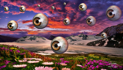 eyes sunset mountains flowers snow