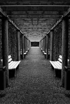 freetoedit bench blackandwhite travel photography