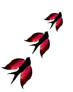birds autumn leaves fly autumniscoming