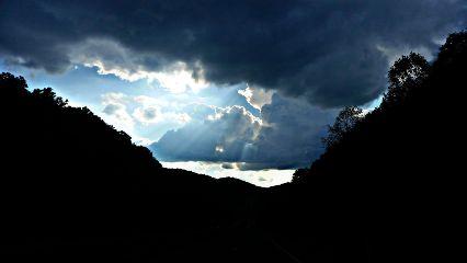 photography nature blackandwhite colorsplash season freetoedit