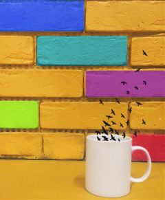 freetoedit colorfulblocks