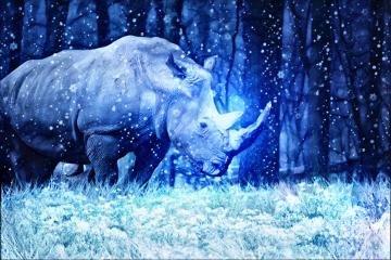 rhinoday freetoedit blue snow letitsnowmagiceffect