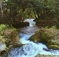 freetoedit nature landscape travel trip