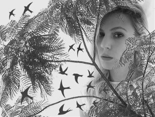 freetoedit girl blackandwhite trees birds