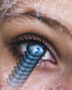 freetoedit eye door windowtothesoul opendoor