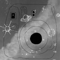 freetoedit sky plants polaroid sketched