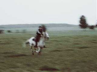seafoameffect blurry horse fast race freetoedit