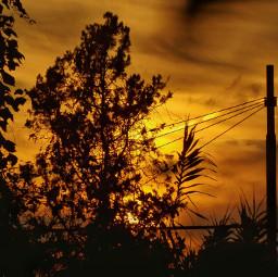 dpcfallfeels autumn autumnvibes sunset traveltreasures