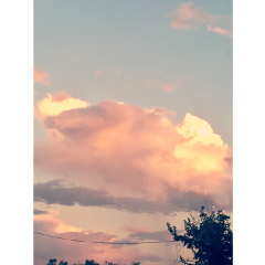 myphoto photography sunrise trees pastel daydreaming daydreamer