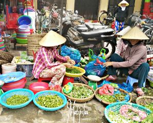 hoiam un vietnam travel emotiones