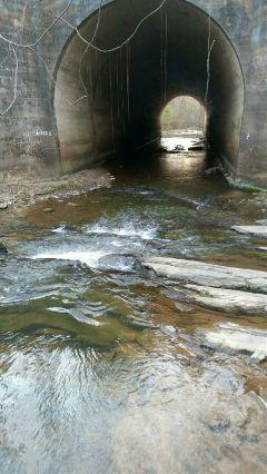 freetoedit background coolbackground bridge water