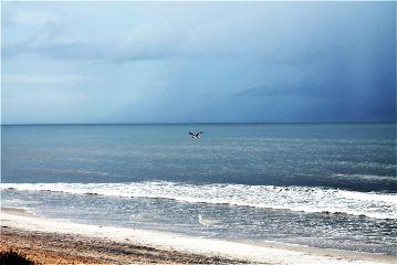 dpcsymmetry flight ocean blue beach