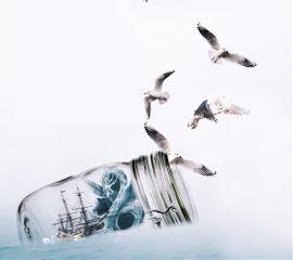 sea dragon blue jar birds