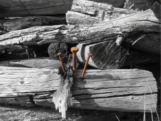 wood found detail nails nature freetoedit