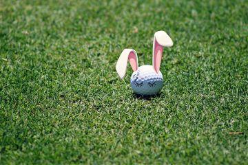 freetoedit rabbit ball golfedit