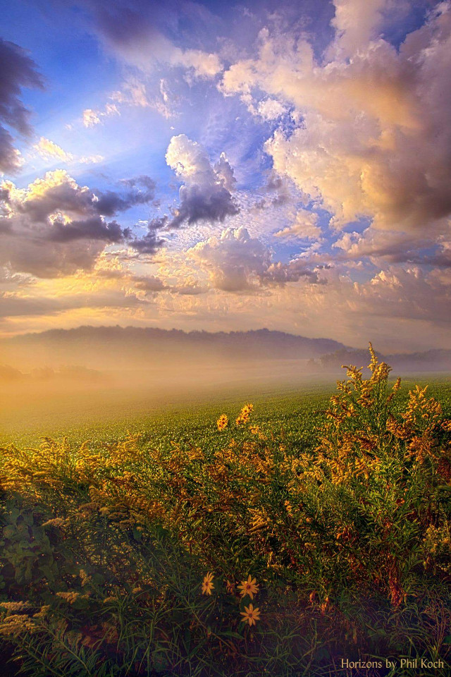 """"""" Lord Hear Us """" - Wisconsin Horizons by Phil Koch #remixit #mistic #mist #photography #nature #travelphotography #hdrphotography #nature"""