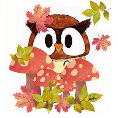 owl mushrooms leaves autumnleaves autumndays