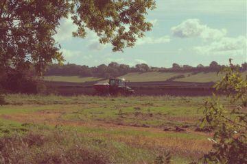 landscape agriculture tractor adjusttool vintageeffect