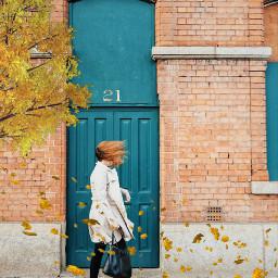 edited autumn door number fallingleaves windy tree woman