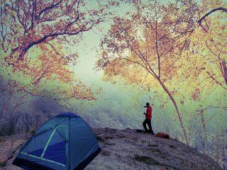 freetoedit camping adventure forest landscape