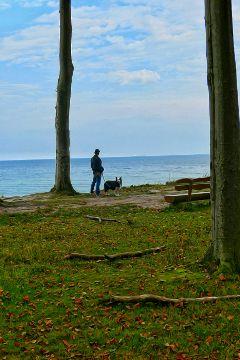 freetoedit photography nature emma mydog