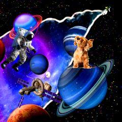 freetoedit dailyremixchallenge dailyremix space dog