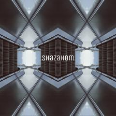 escalatorremix mirrored mirrorart shazahom1 freetoedit